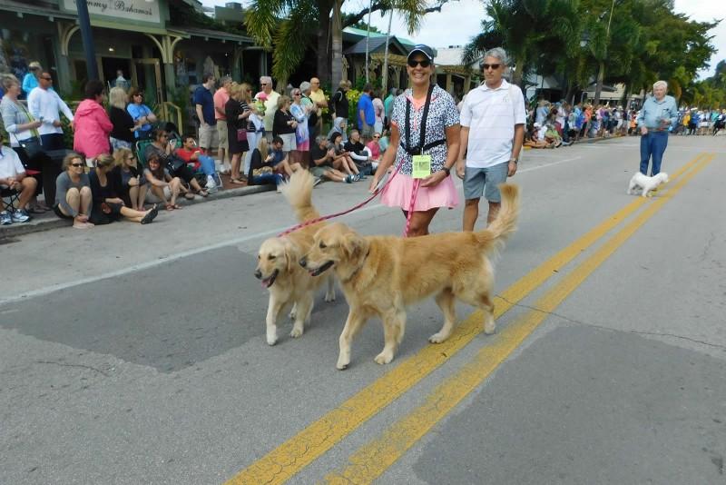 Pets on Third Parade