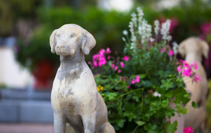 third street south flowers and dog statues