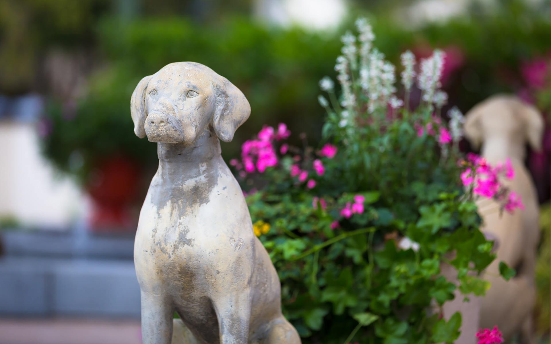 Smitten with Flora & Gardens