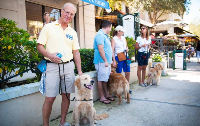 PAWS Assistance Dogs at Third On Canvas