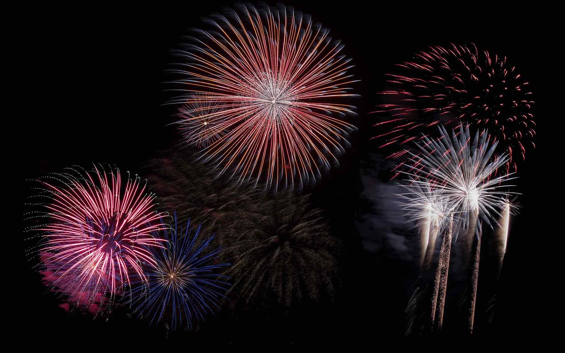 Fireworks Against the Sky